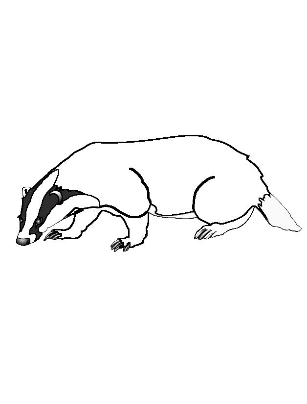 Ausmalbilder von Biber Berry (Eule, Fuchs und viele Tiere mehr ...