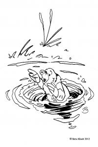 Ausmalbilder Zu Dem Kinderbuch Cora Und Ihre Zauberhaften Erlebnisse Kigunage